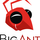 Big Ant Studios Join The Interactive Games and Entertainment Association